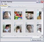 flickr_backup_main.JPG